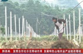 黔西南新闻联播2019-09-16