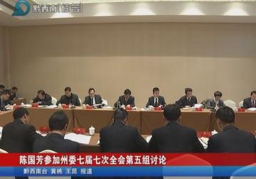 陳國芳參加州委七屆七次全會第五組討論